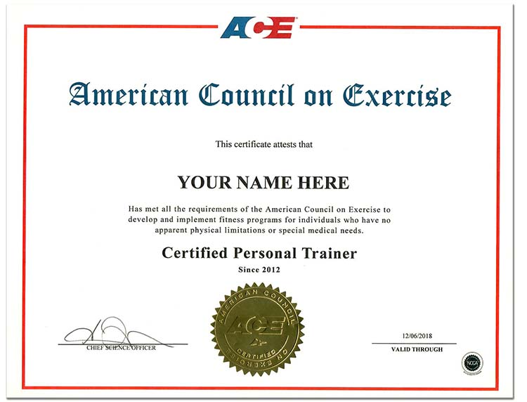Fake Personal Trainer Style 3